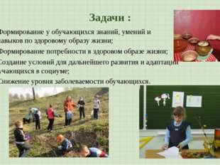 Задачи : Создание условий для дальнейшего развития и адаптации обучающихся в