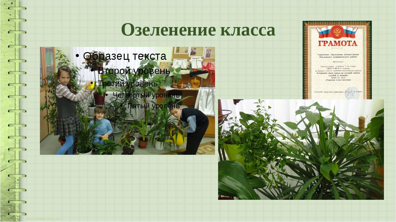 Озеленение класса