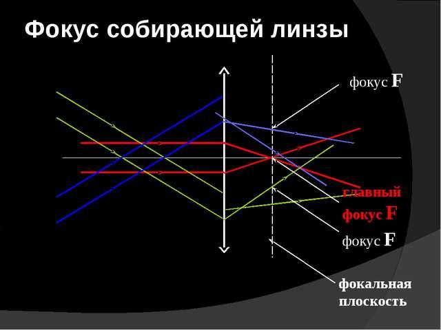 Фокус собирающей линзы фокальная плоскость фокус F главный фокус F фокус F