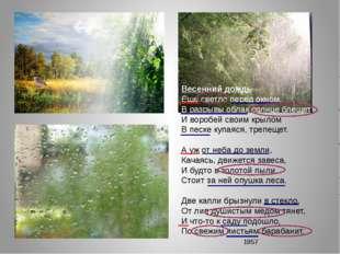 Весенний дождь Еще светло перед окном, В разрывы облак солнце блещет, И вороб