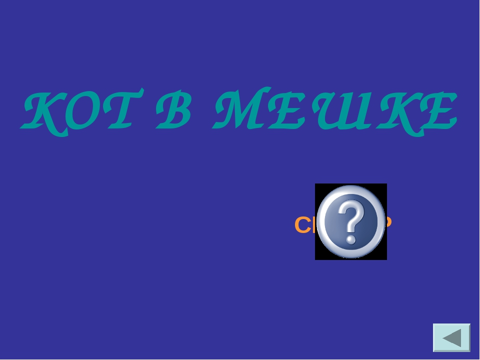 КОТ В МЕШКЕ СКАНЕР