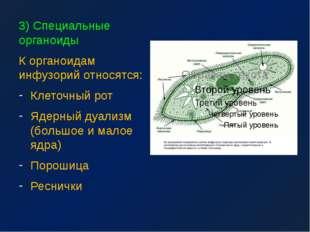 3) Специальные органоиды К органоидам инфузорий относятся: Клеточный рот Ядер