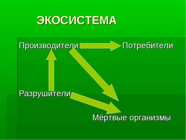 Тест по окружающему миру 3 класс вахрушев экосистема