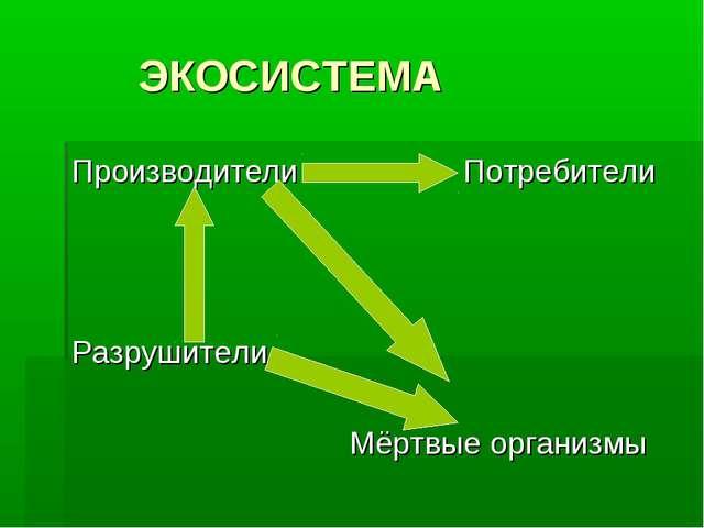 ЭКОСИСТЕМА Производители