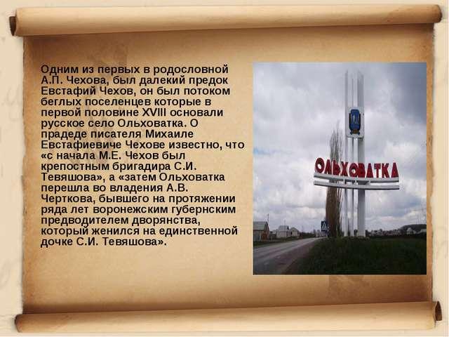 Одним из первых в родословной А.П. Чехова, был далекий предок Евстафий Чехов...