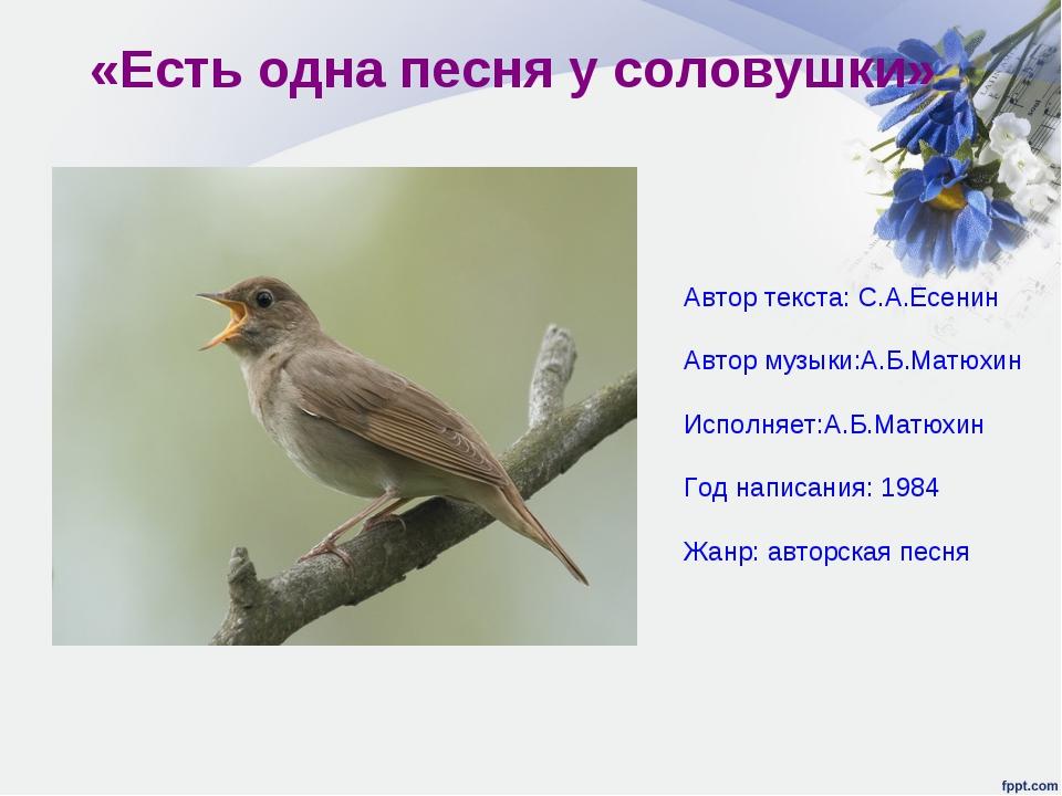 «Есть одна песня у соловушки» Автор текста: С.А.Есенин Автор музыки:А.Б.Матюх...
