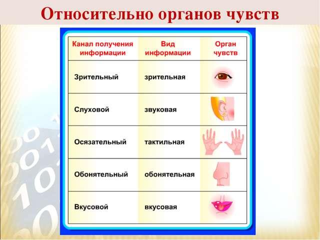 Относительно органов чувств