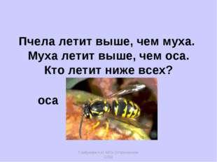 Горбунова Н.И. МОУ Остроленская СОШ Пчела летит выше, чем муха. Муха летит вы