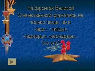 На фронтах Великой Отечественной сражались не только люди, но и «яки», «тигры