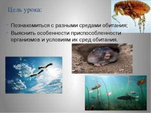 Цель урока: Познакомиться с разными средами обитания; Выяснить особенности пр