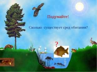 Сколько существует сред обитания?   Подумайте! ?