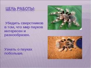 Убедить сверстников в том, что мир пауков интересен и разнообразен. Узнать о