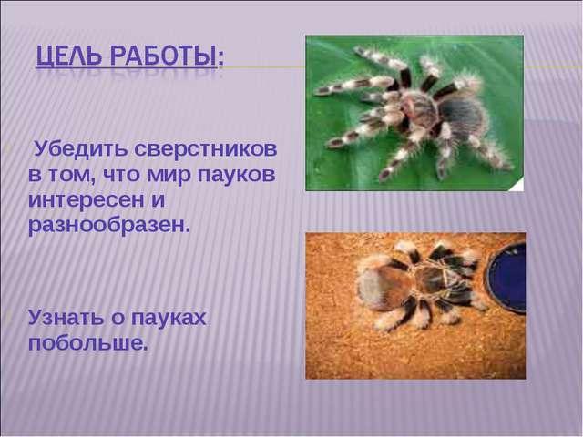 Убедить сверстников в том, что мир пауков интересен и разнообразен. Узнать о...