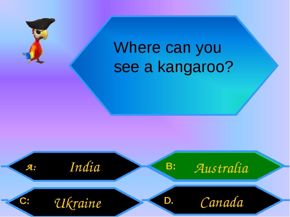 Where can you see a kangaroo? A: C: B: D. India Ukraine Australia Canada