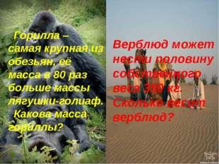 Горилла – самая крупная из обезьян, её масса в 80 раз больше массы лягушки-го