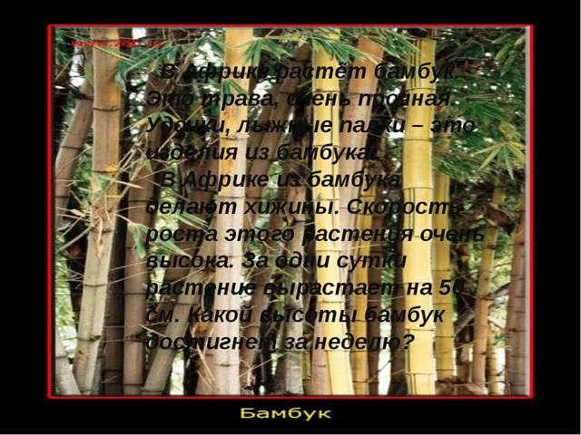 В Африке растёт бамбук. Это трава, очень прочная. Удочки, лыжные палки – это...
