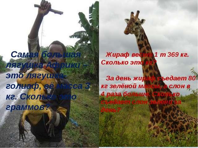 Жираф весит 1 т 369 кг. Сколько это кг?  За день жираф съедает 80 кг зелёной...