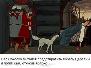 Пёс Соколко пытался предотвратить гибель Царевны и погиб сам, откусив яблоко