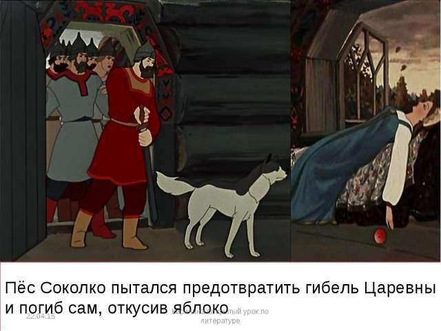Пёс Соколко пытался предотвратить гибель Царевны и погиб сам, откусив яблоко...