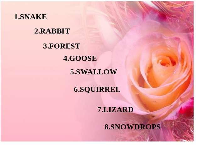 1.SNAKE 2.RABBIT 3.FOREST 4.GOOSE 5.SWALLOW 6.SQUIRREL 7.LIZARD 8.SNOWDROPS