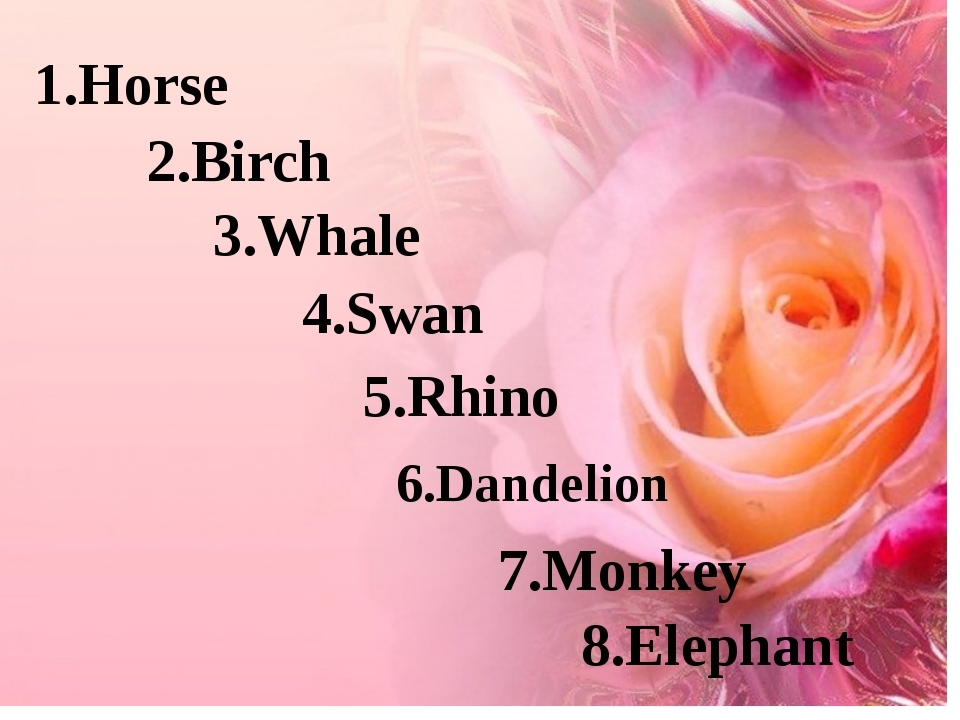 1.Horse 2.Birch 3.Whale 4.Swan 5.Rhino 6.Dandelion 7.Monkey 8.Elephant