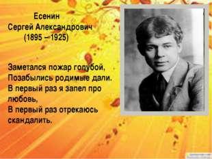 Есенин Сергей Александрович (1895 – 1925) Заметался пожар голубой, Позабыли