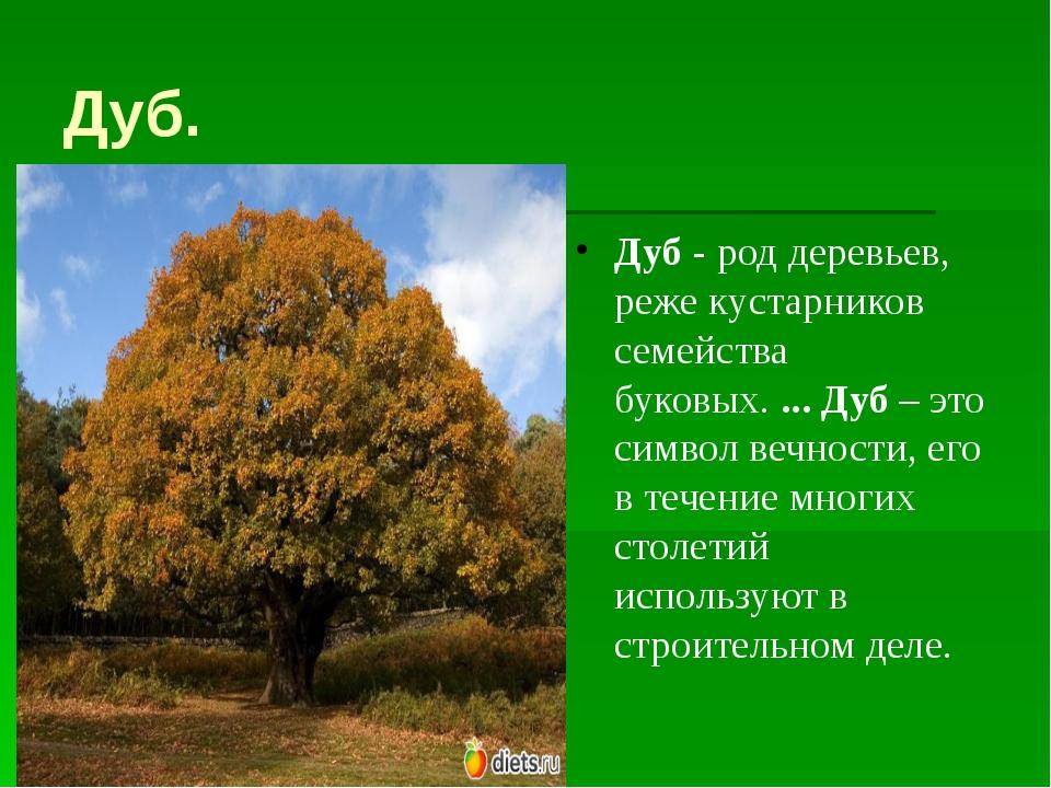 Дуб. Дуб- род деревьев, реже кустарников семейства буковых....Дуб– это си...