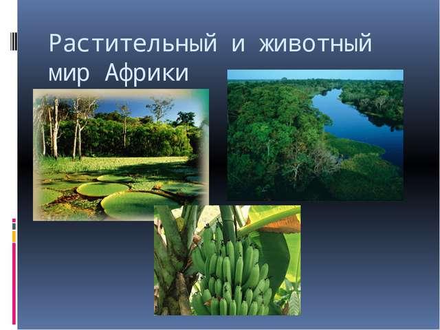 Растительный и животный мир Африки