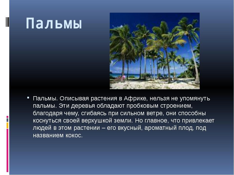 Пальмы Пальмы. Описывая растения в Африке, нельзя не упомянуть пальмы. Эти д...