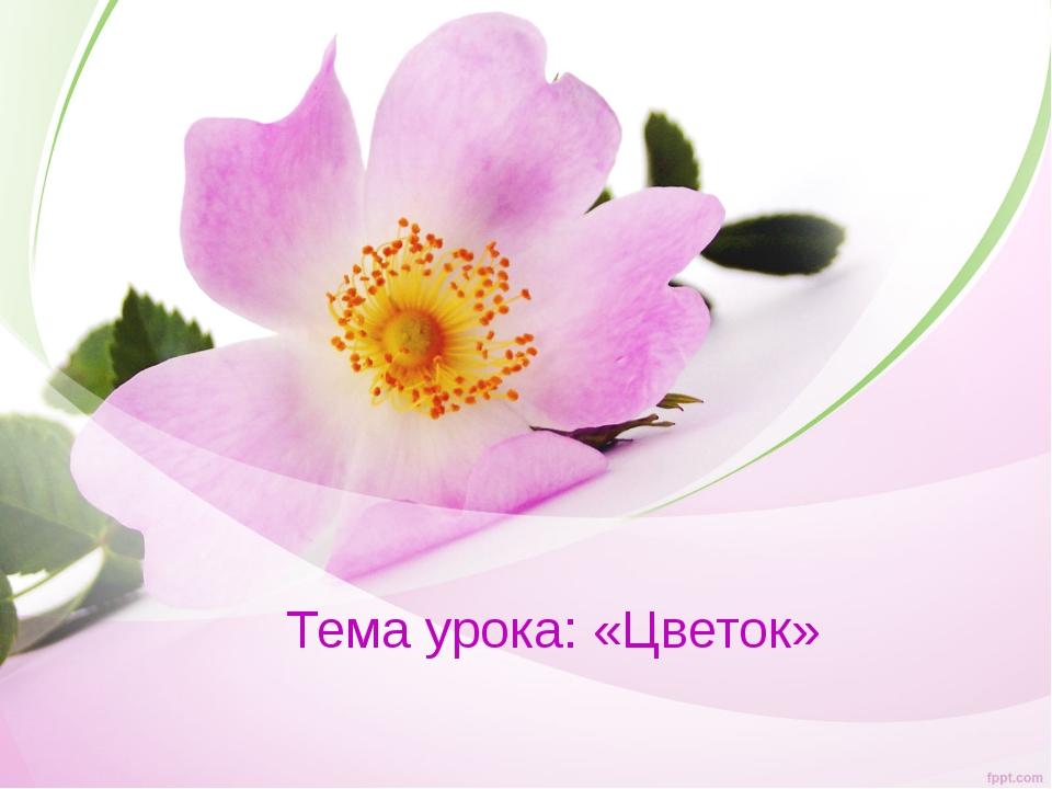 Тема урока: «Цветок»