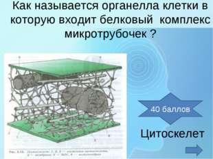 Как называется органелла клетки в которую входит белковый комплекс микротрубо