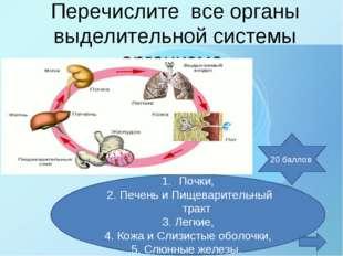 Перечислите все органы выделительной системы организма. Почки, 2. Печень и Пи