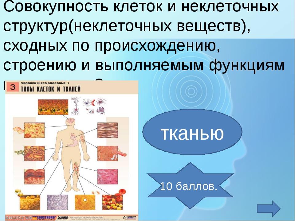 Совокупность клеток и неклеточных структур(неклеточных веществ), сходных по п...
