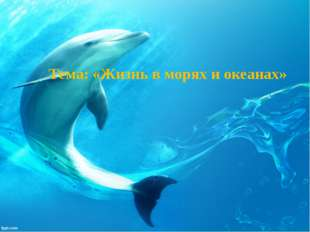 Тема: «Жизнь в морях и океанах»