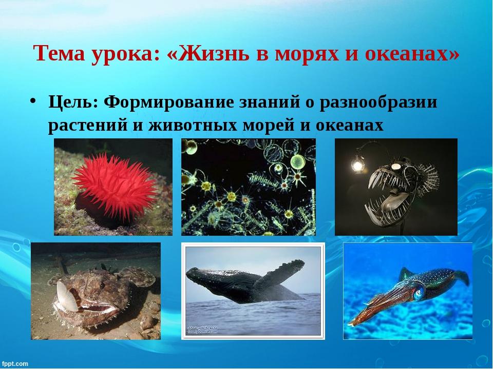 Тема урока: «Жизнь в морях и океанах» Цель: Формирование знаний о разнообрази...
