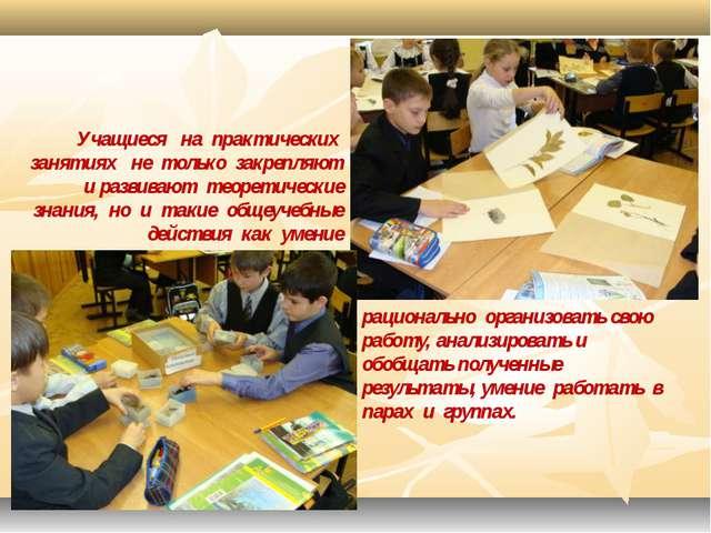 Учащиеся на практических занятиях не только закрепляют и развивают теоретичес...