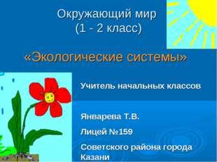 «Экологические системы» Учитель начальных классов Январева Т.В. Лицей №159 С