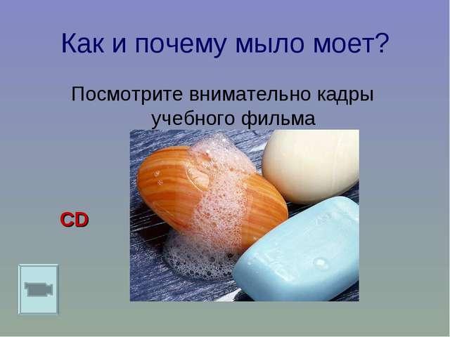 Как и почему мыло моет? Посмотрите внимательно кадры учебного фильма CD
