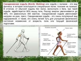 Скандинавская ходьба (Nordic Walking) или ходьба с палками - это вид фитнеса,