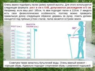Очень важно подобрать палки (poles) нужной высоты. Для этого используется сле