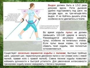 Существует несколько вариантов ходьбы с палками: быстрые тройные шаги, широки