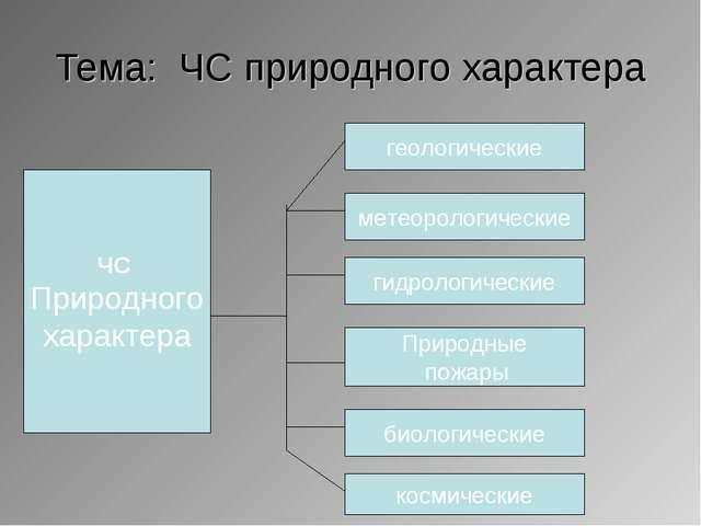 Тема: ЧС природного характера ЧС Природного характера метеорологические гидро...