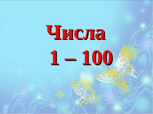 Числа 1 – 100