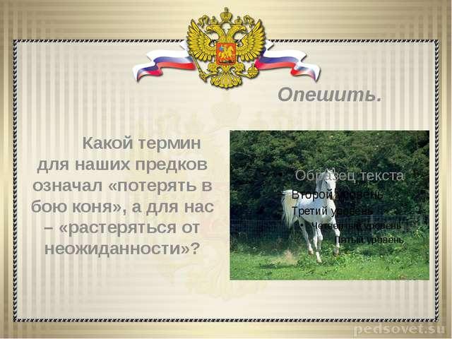 Какой термин для наших предков означал «потерять в бою коня», а для нас – «р...