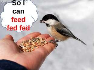 So I can feed fed fed