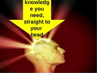 The knowledge you need, straight to your head