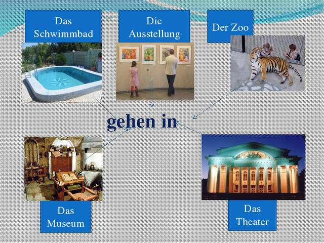 Das Schwimmbad Die Ausstellung Der Zoo Das Theater Das Museum gehen in