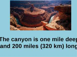 Р. В. Покотило ГОУ СОШ 1200 The canyon is one mile deep and 200 miles (320 km