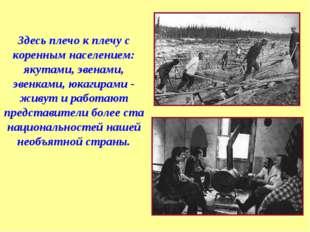 Здесь плечо к плечу с коренным населением: якутами, эвенами, эвенками, юкагир