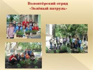 Волонтёрский отряд «Зелёный патруль»